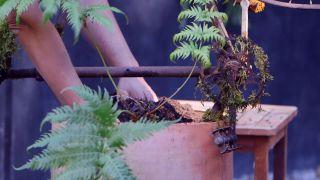 escultura vegetal con helechos y una bicicleta oxidada - paso 3