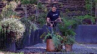 escultura vegetal con helechos y una bicicleta oxidada -escultura vegetal con helechos y una bicicleta oxidada - paso 4