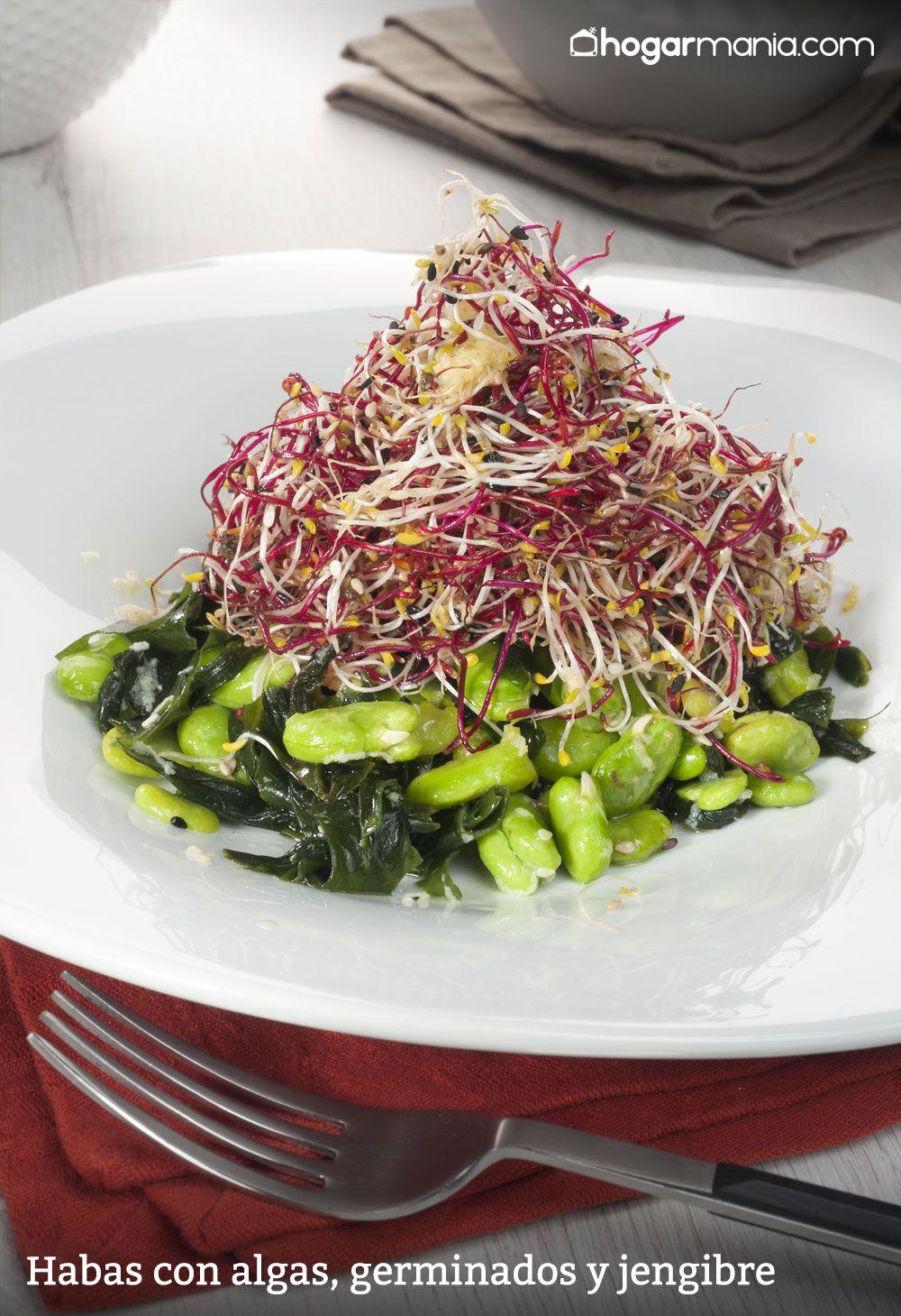 Habas con algas, germinados y jengibre