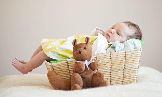 Canasta Para Bebe Recien Nacido.Canastillas Para Bebes Recien Nacidos Hogarmania