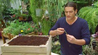 Plantar hierbas aromáticas en mesas de cultivo - Paso 2