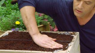 Plantar hierbas aromáticas en mesas de cultivo - Paso 4