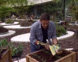 Huerto urbano y ecológico en mesas de plantación - Paso 1