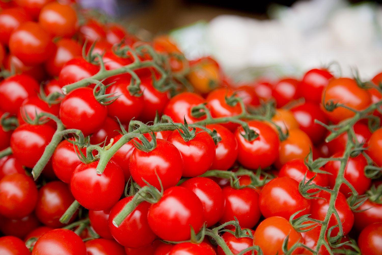 C Mo Cultivar Tomates Cherry Hogarmania ~ Como Cultivar Tomates En El Huerto