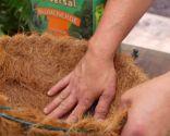 Plantación de helechos en cestos colgantes - Cesto de fibra de coco