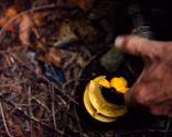 Reparar tubería enterrada en el jardín - Paso 6