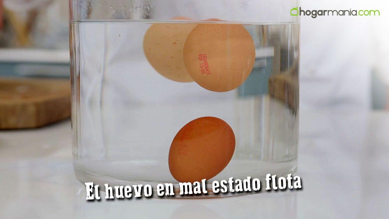 ¿Cómo saber si un huevo está en mal estado?