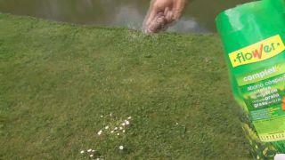Herbicidas para el césped y el jardín
