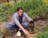 Herbicidas para el césped y el jardín - Contenedor sin base
