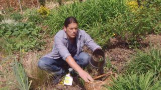 deco-658-herbicidas-cesped-jardin-contenedor-base