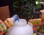 Cómo eliminar la plaga de cochinilla con productos biológicos - Producto biológico