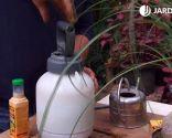 Cómo eliminar la plaga de cochinilla con productos biológicos - Diluir en agua