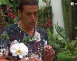 Cómo reproducir orquídeas a partir del tallo floral - Poda tallo floral
