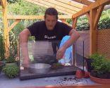 Hacer un humedal en una pecera - Paso 3