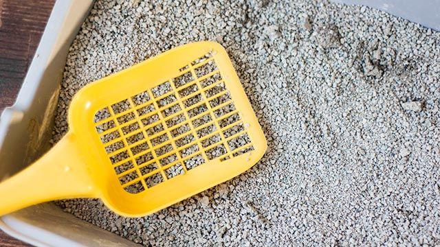 Caja de arena