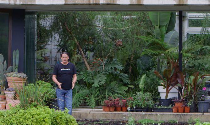 Los consejos de jardiner a del fin de semana 8 y 9 de - Tareas de jardineria ...