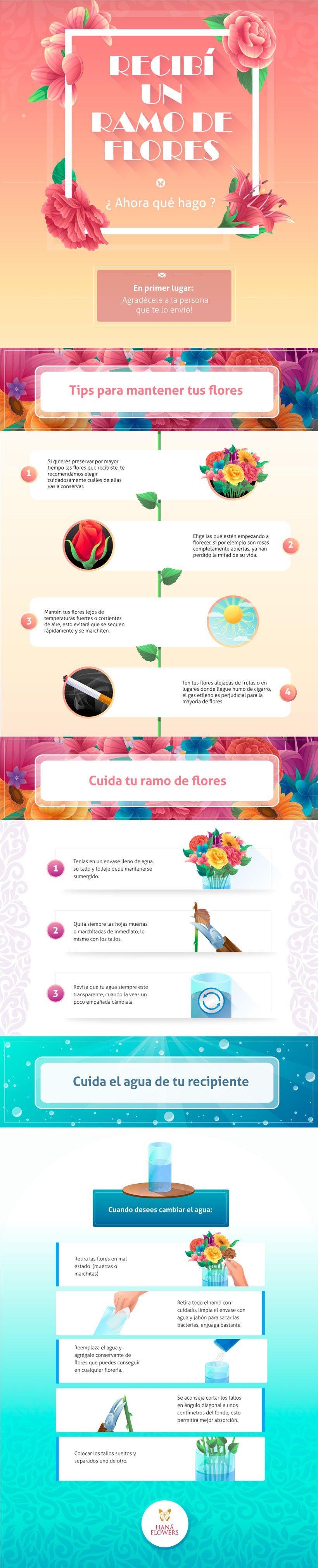 Infografía con consejos para conservar un ramo de flores