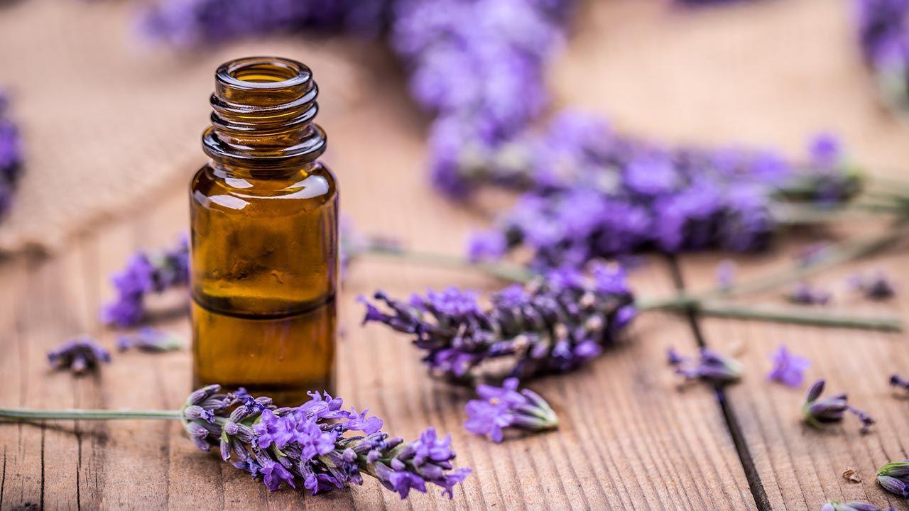 aromaterapia lavanda