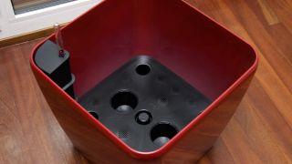 Decorar salón con una kentia en hidrojardinera - Paso 1