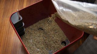 Decorar salón con una kentia en hidrojardinera - Paso 2