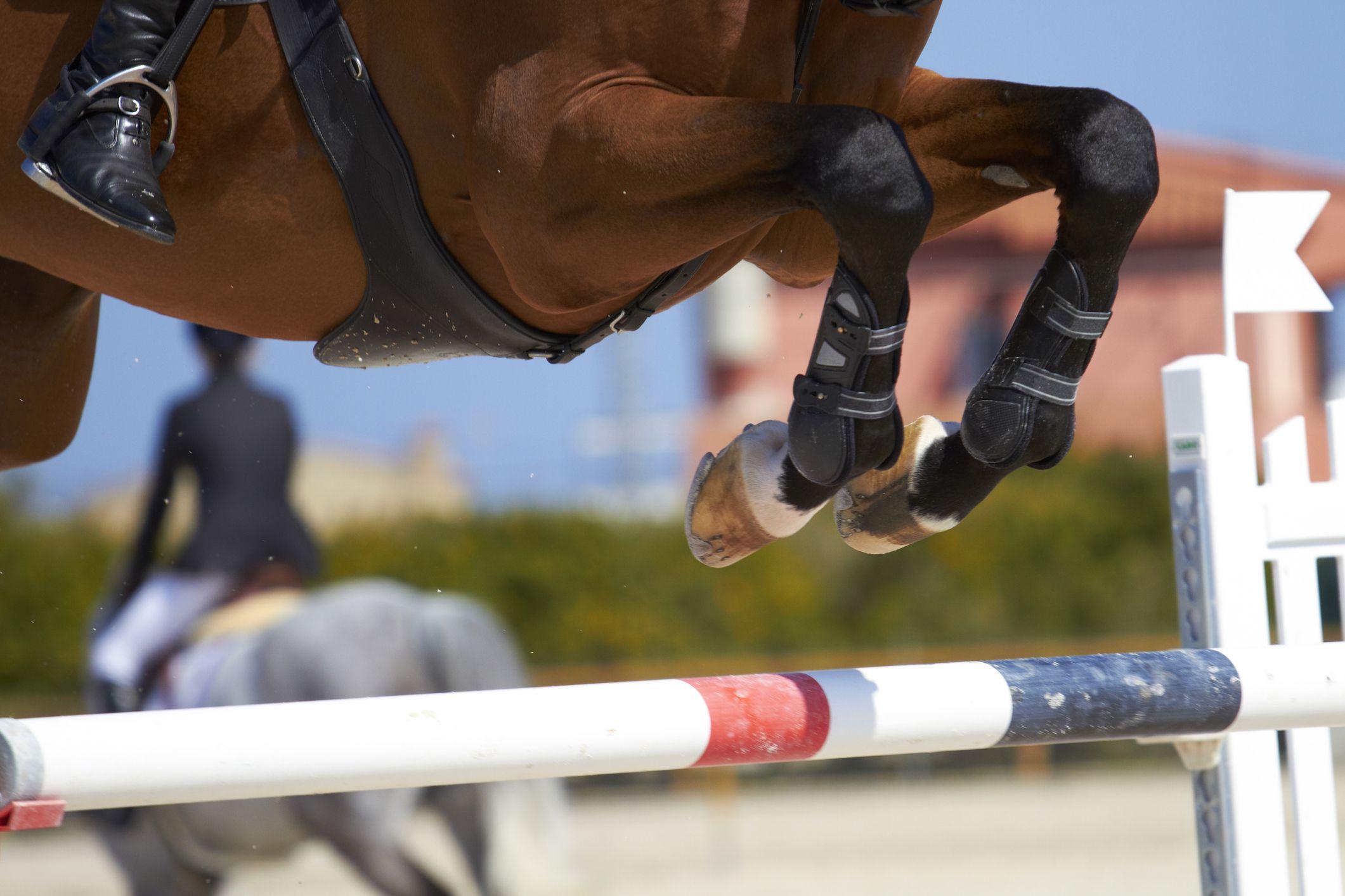 salto de un caballo