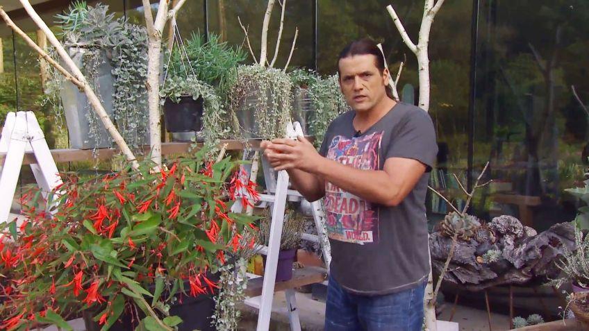 comienza la nueva temporada de jardinera en bricomana y decogarden - Bricomania Jardineria