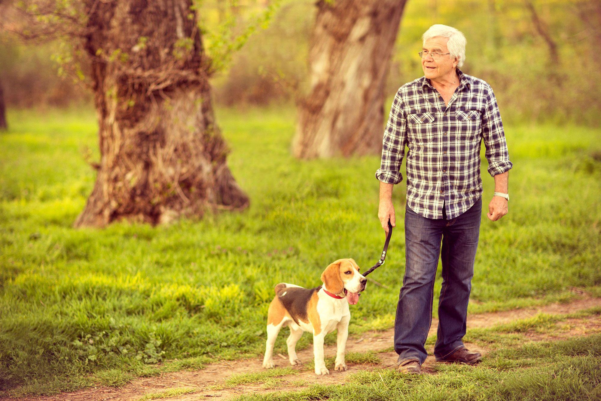 personas mayores perros