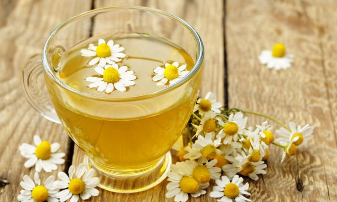 Manzanilla, planta digestiva y antiinflamatoria - Hogarmania