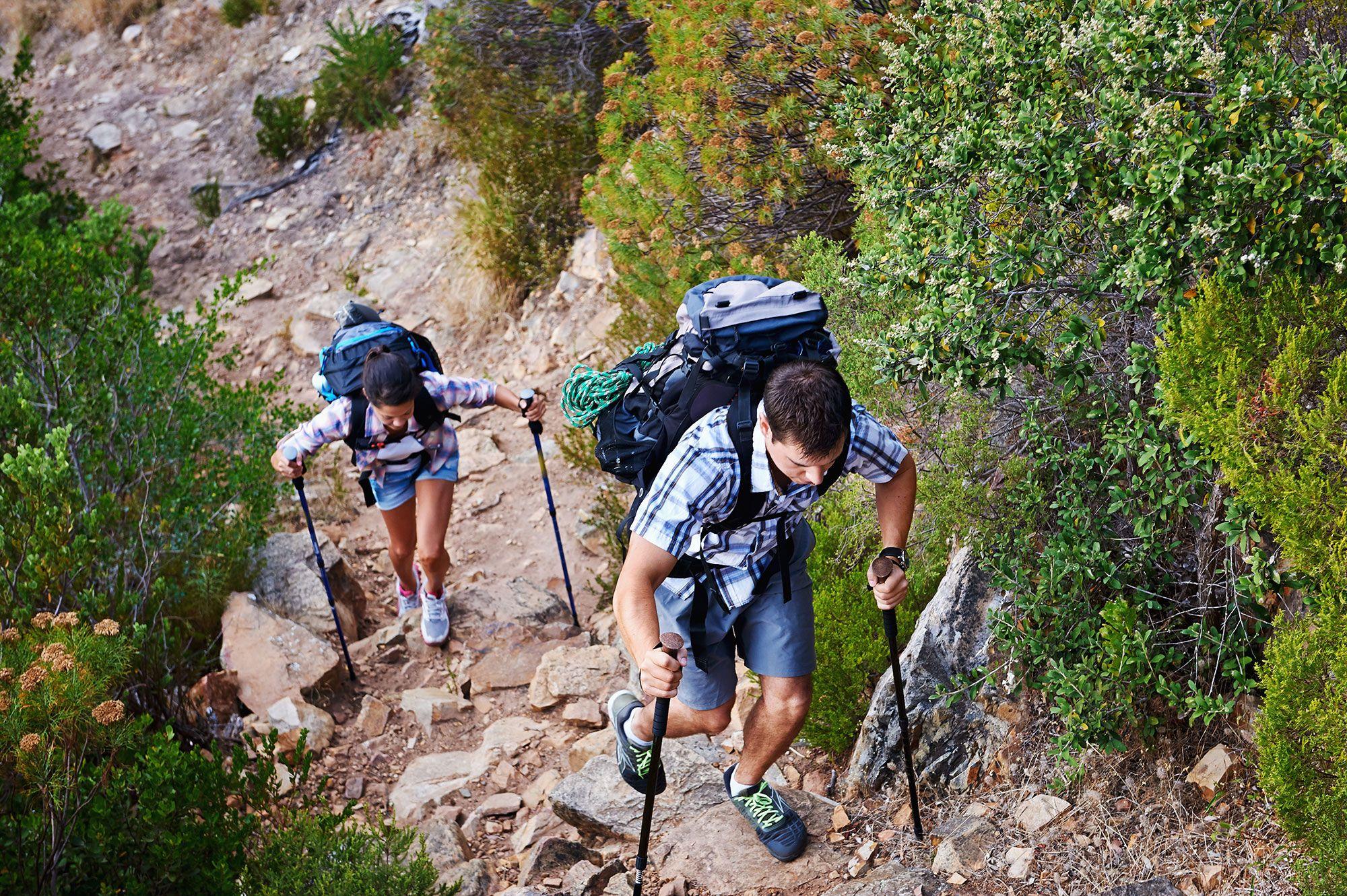 bastones trekking