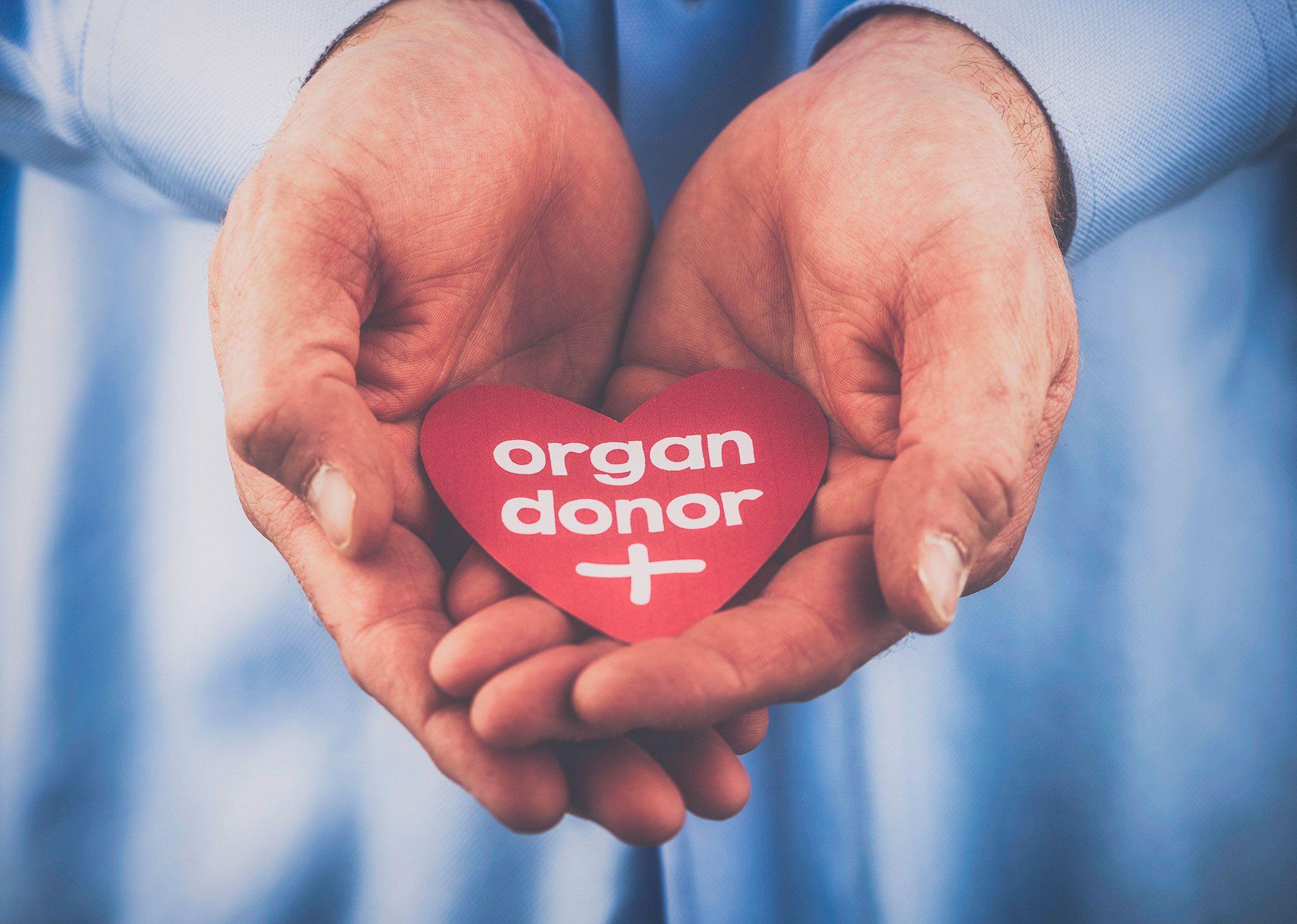 donación órganos