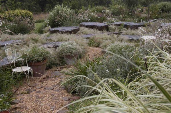 Hortensia Annabelle con hortensia paniculata y persicaria