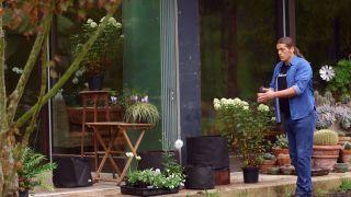 Jardineras de tela - Combinación de colores