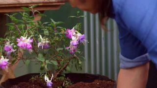 Jardineras de tela - Paso 5