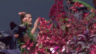 Parterre floral en tonos rosas y negros con alegrías guineanas y alocasias - Iresine