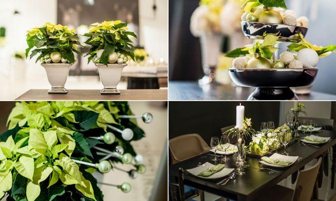 Decoraci n navide a elegante con flor de pascua hogarmania for Hogarmania com decoracion