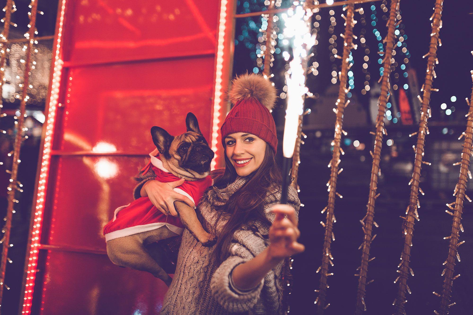 mascotas navidad pirotecnia