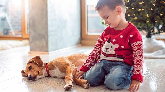 niños mascotas navidad