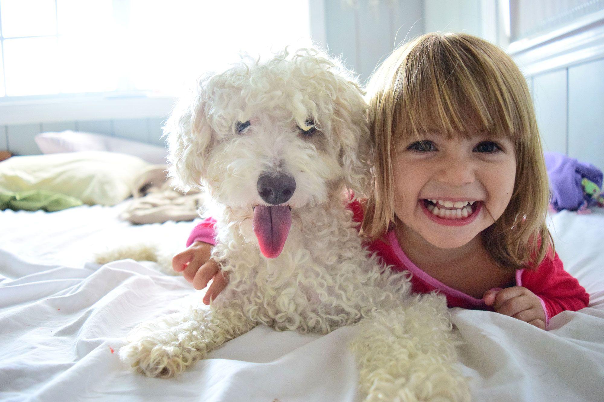 mascotas niños