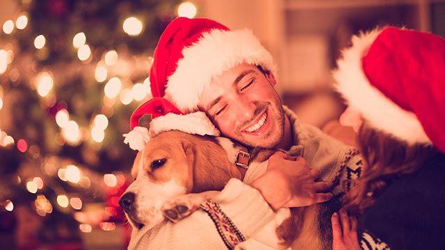 mascotas regalos navidad