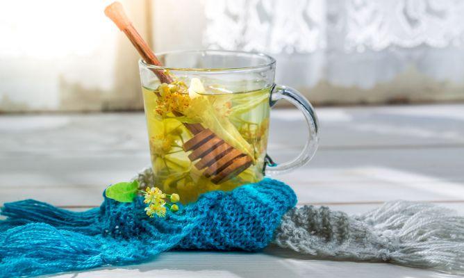 hierbas para la tos y el resfriado