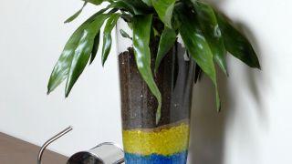 Composición floral con bromelia en recipiente con geles de colores - Detalle final