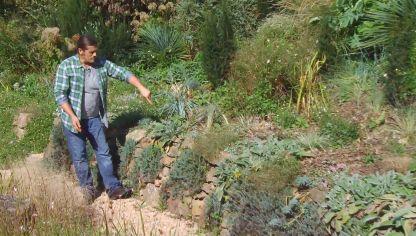 Los consejos de jardiner a del fin de semana 3 y 4 de - Consejos de jardineria ...