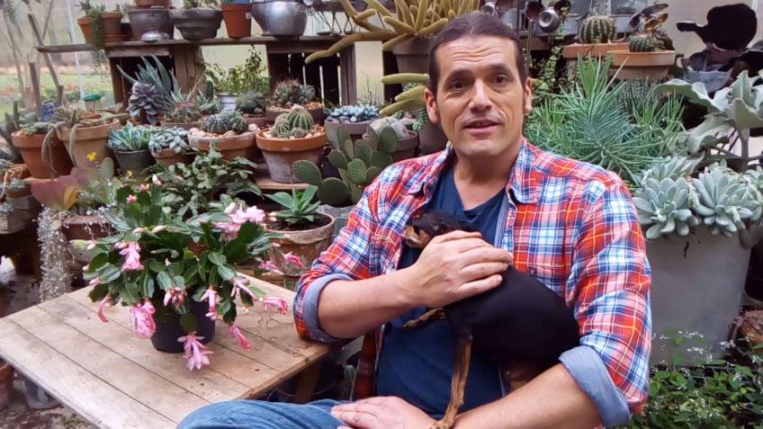 los consejos de jardinera del fin de semana 20 y 21 de enero de 2018 hogarmania - Bricomania Jardineria