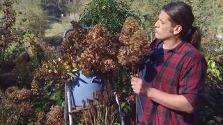 Centros de flores de invierno - Recipientes