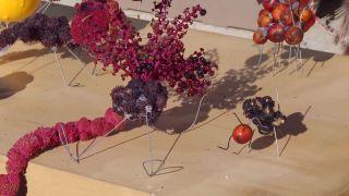 Recolectar bayas y frutos de invierno para hacer centros decorativos - Centro 2