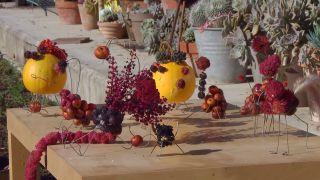 Recolectar bayas y frutos de invierno para hacer centros decorativos - Centros