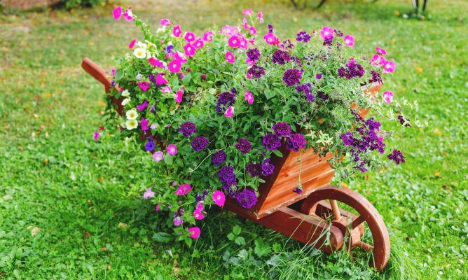 Decorar el jard n con carretillas con plantas hogarmania for Plaquetas decorativas para exterior