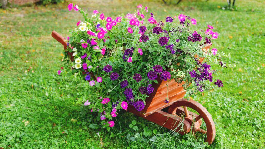 Decorar El Jardin Con Carretillas Con Plantas Hogarmania - Decoracion-de-jardines-con-plantas