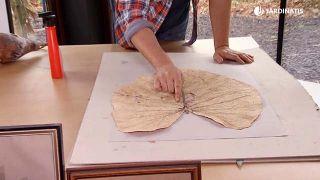 Prensar hojas de forma original - Oreja de elefante