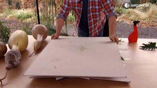 Prensar hojas de forma original - Paso 3
